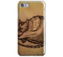 THE SLEEPING CAT  iPhone Case/Skin