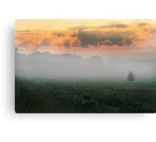 Foggy Grassland Canvas Print