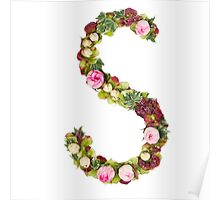 Capital Letter S Part of a set of letters, Numbers and symbols Poster