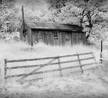 Old Apple Pickers Hut by Ian Robertson