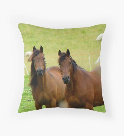It Takes Two To Tango - Horses - NZ Throw Pillow