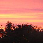 Pastel Evening by resada