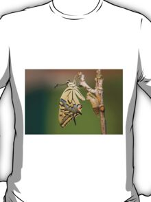 Butterfly as it emerges from its cocoon. T-Shirt