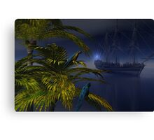 Offshore Visitor Canvas Print