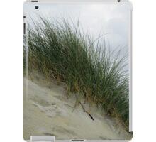 A Steep Climb iPad Case/Skin