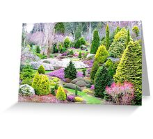 A Glympse Of Fairy Land ... Conifers Maple Glen - NZ Greeting Card
