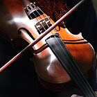 sunshine on a violin by Clare Colins