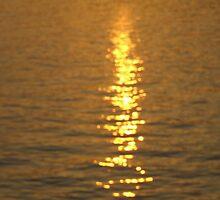 Sunset # 4 at Lake Murray South Carolina by Ray1945