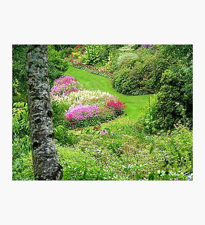 Maple Glen Gardens - Southland - NZ ** Photographic Print