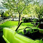 Go Green 2 by hud45