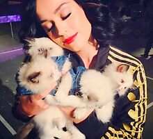 Katy With Her Kitty Kats by KnightVII