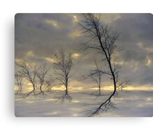 Dancing Trees ! Canvas Print