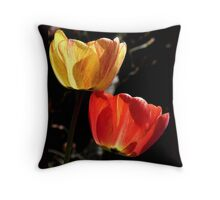 Let the Light shine Through! - Tulips - NZ - Southland Throw Pillow