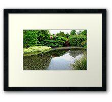 Natures Amazing Mirror! - Garden - Southland Framed Print