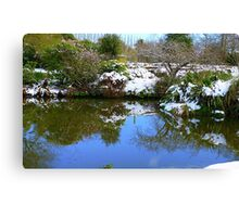 Nature Twice! - Pond Reflection - NZ - Southland Canvas Print