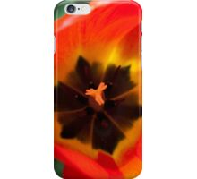 Anatomy of a Tulip: Orange Squared iPhone Case/Skin