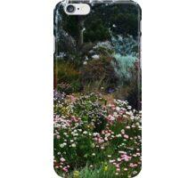 The Wild Wild West iPhone Case/Skin