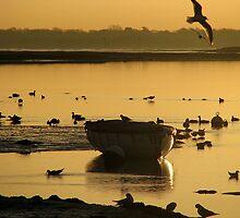 Sunrise 2 22-01-08 by Sharon Perrett