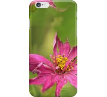 tattered flowers iPhone Case/Skin