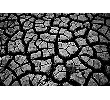 Dry, Cracked, Parched land Photographic Print