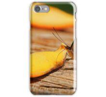 Sweet Nectar iPhone Case/Skin
