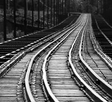 Tracks by Robert Meyer