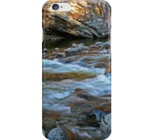 Nature's Tranquil Symphony iPhone Case/Skin