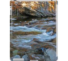 Nature's Tranquil Symphony iPad Case/Skin