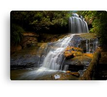 Lyrebird Glen Falls. Canvas Print