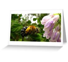 busy bumble 2 Greeting Card