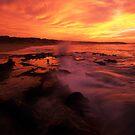 under golden light by Tony Middleton