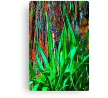 Psychedelic RainForest Series #2 - Yarra Ranges National Park, VIctoria Australia Canvas Print