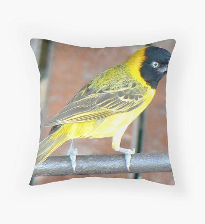Weaver Bird  (II) Throw Pillow