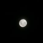 My Full Moon by Bekster