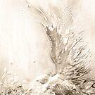 phoenix monocolor by cristina
