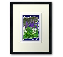 WILD LUPINE  Framed Print