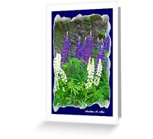WILD LUPINE  Greeting Card
