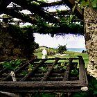 Beyond old window frame by Efi Keren