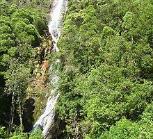 Montezuma Falls, Rosebery - 104 m high. by gaylene