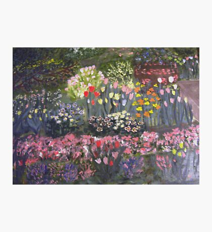 Little Flower Garden Photographic Print
