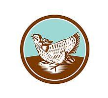 Prairie Chicken Retro Circle by patrimonio