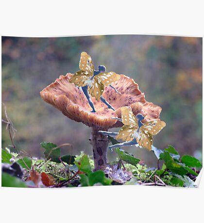 Fairies on fungus Poster