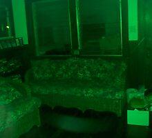 If My Living Room Were Green by karen66