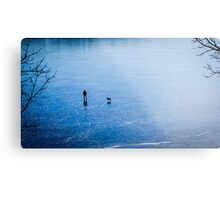 Man, dog, frozen lake Metal Print