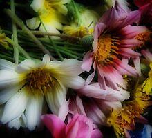 Wildflowers by yolanda