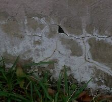 Crack Abstract by karen66