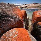 Granite boulders, Binalong Bay, NE Tasmania by Doug Thost