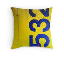 Primary Throw Pillow