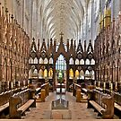 Winchester Cathedral by John Thurgood