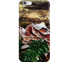 A Black Snake, Leeches and lots of Fungi iPhone Case/Skin